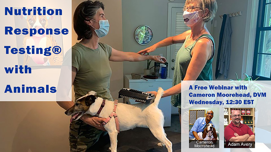 Nutrition Response Testing® with Animals
